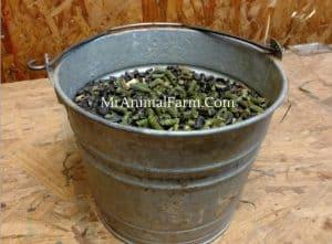 metal bucket with alfalfa pellets and BOSS
