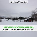 Prevent Frozen Water