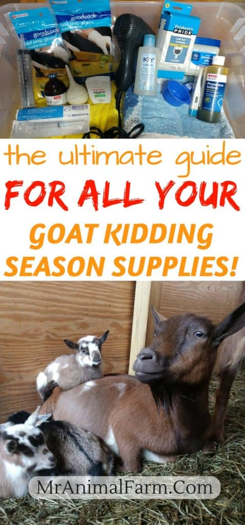 goat kidding supplies