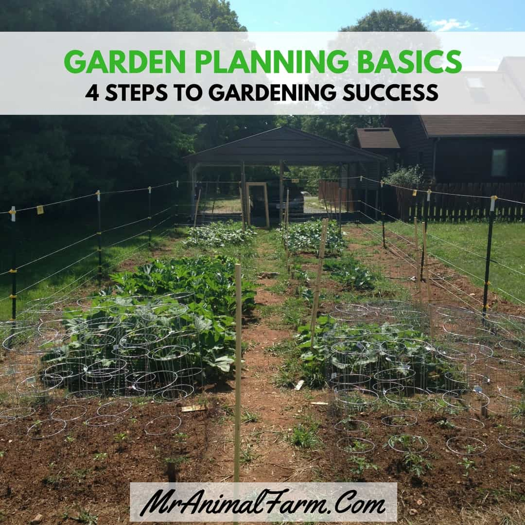 Ultimate Guide To Fall Winter Gardening: 4 Basic Steps To Gardening Success
