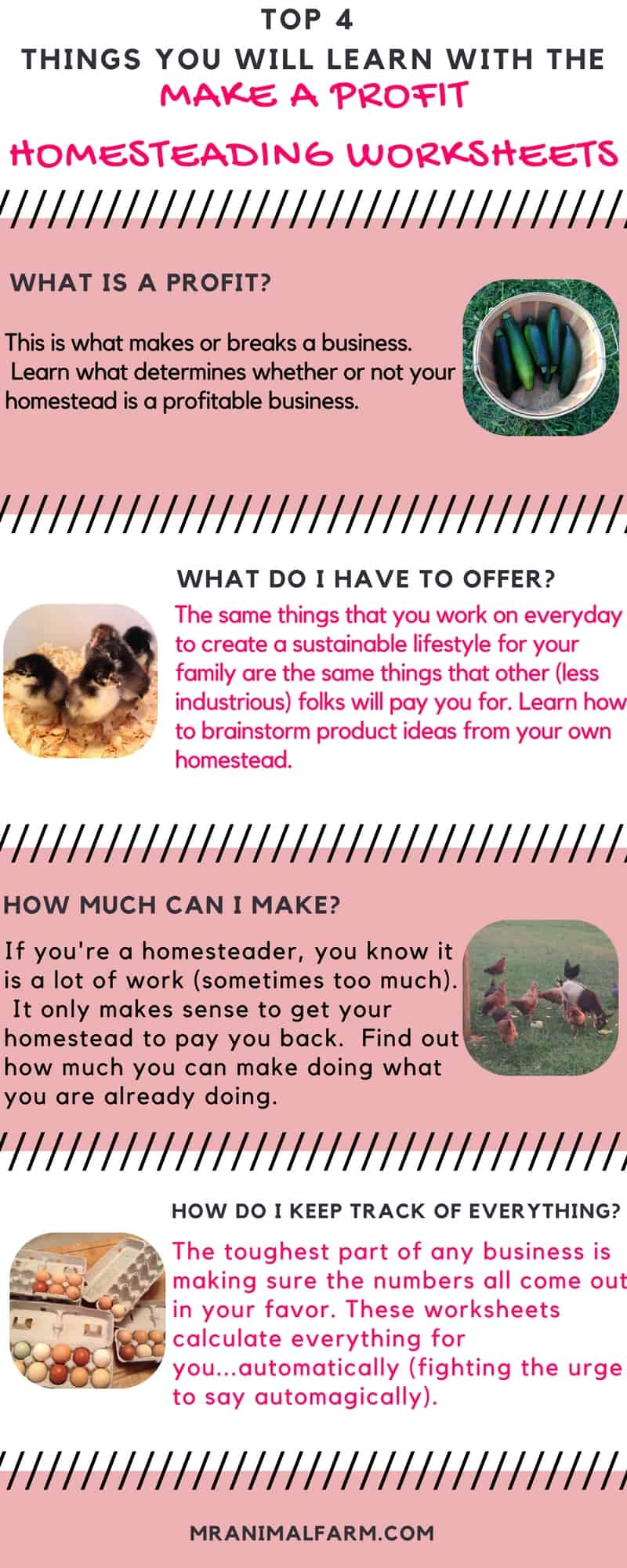 Profitable Homesteading Guide & Worksheets - Make Money Homesteading