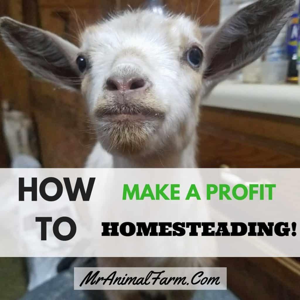 Profitable Homesteading Guide & Worksheets - Make Money Homesteading