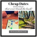 Cheap Date Ideas