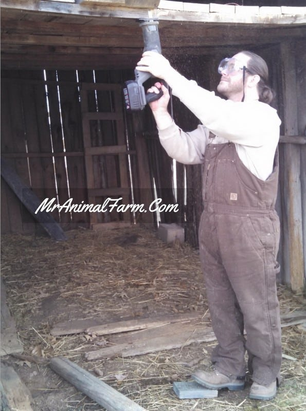 wearing coveralls while sawing goat stall