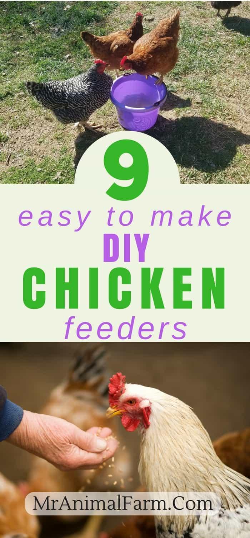 pinterest pin for DIY Chicken Feeder