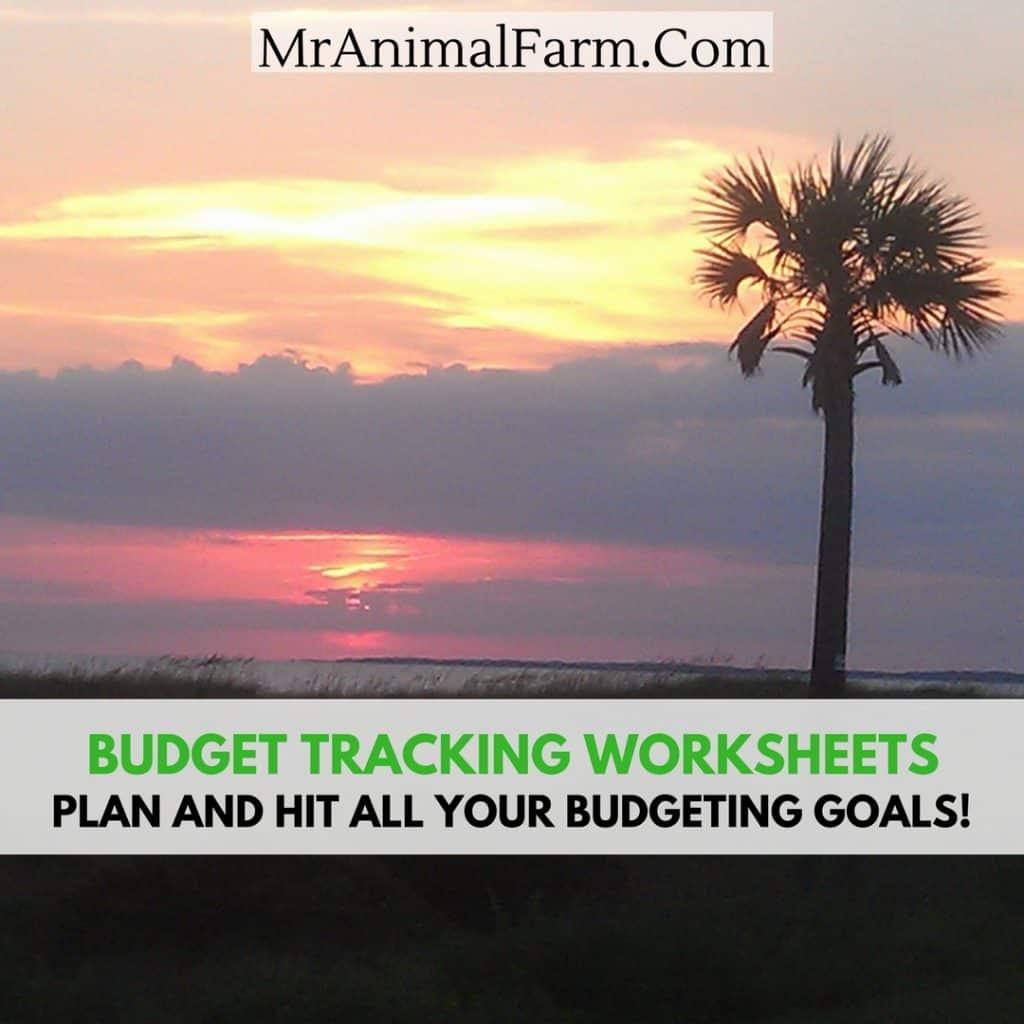 Budget Tracking Worksheets