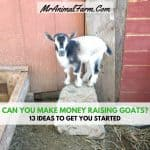 Can You Make Money Raising Goats