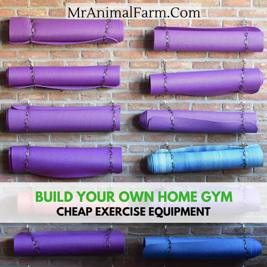 Cheap exercise equipment best home gym