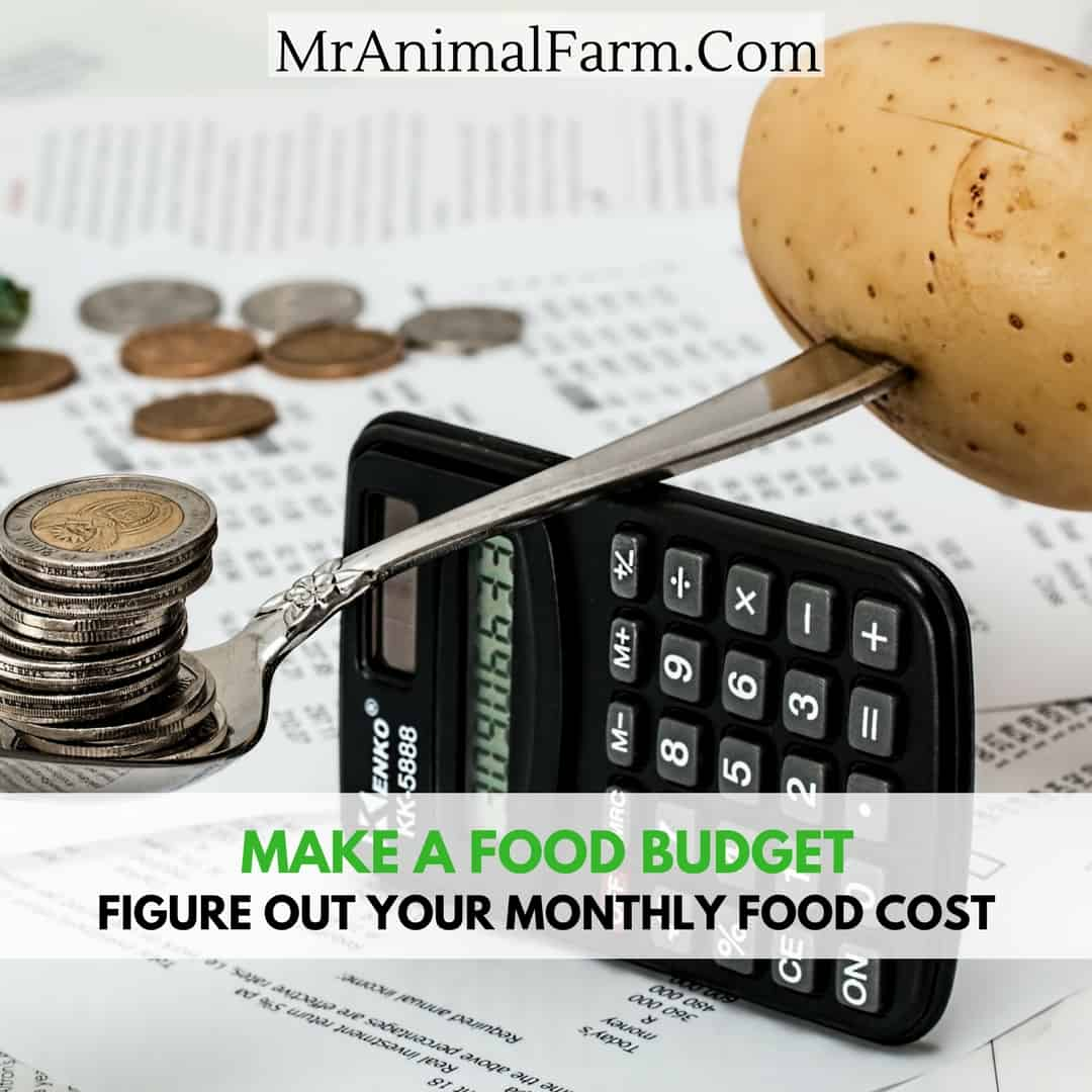 Food Budget How To Figure Out Your Average Food Cost Per Month