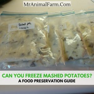 Can You Freeze Mashed Potatoes