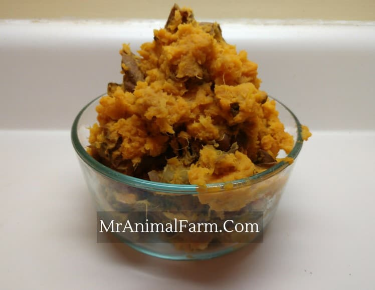 Mashed Sweet Potatoes in a bowl