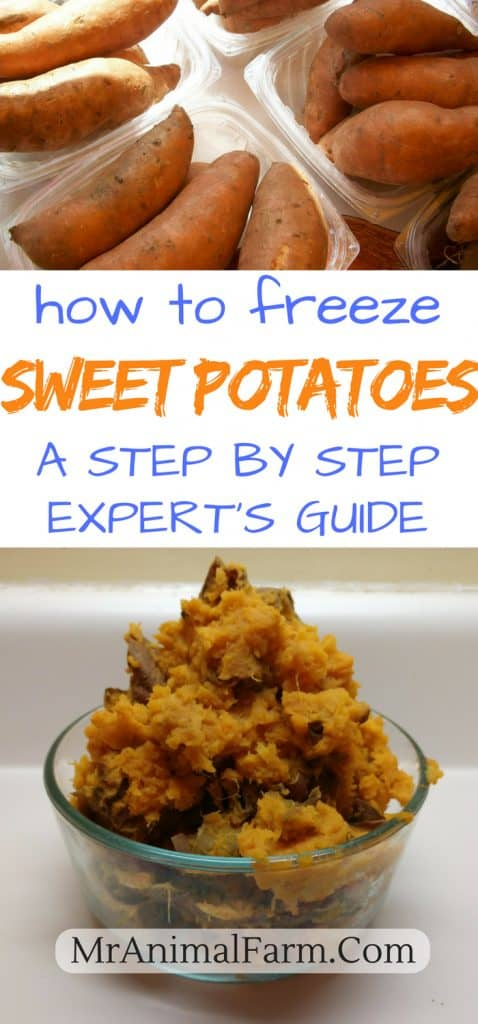 Can You Freeze Sweet Potatoes
