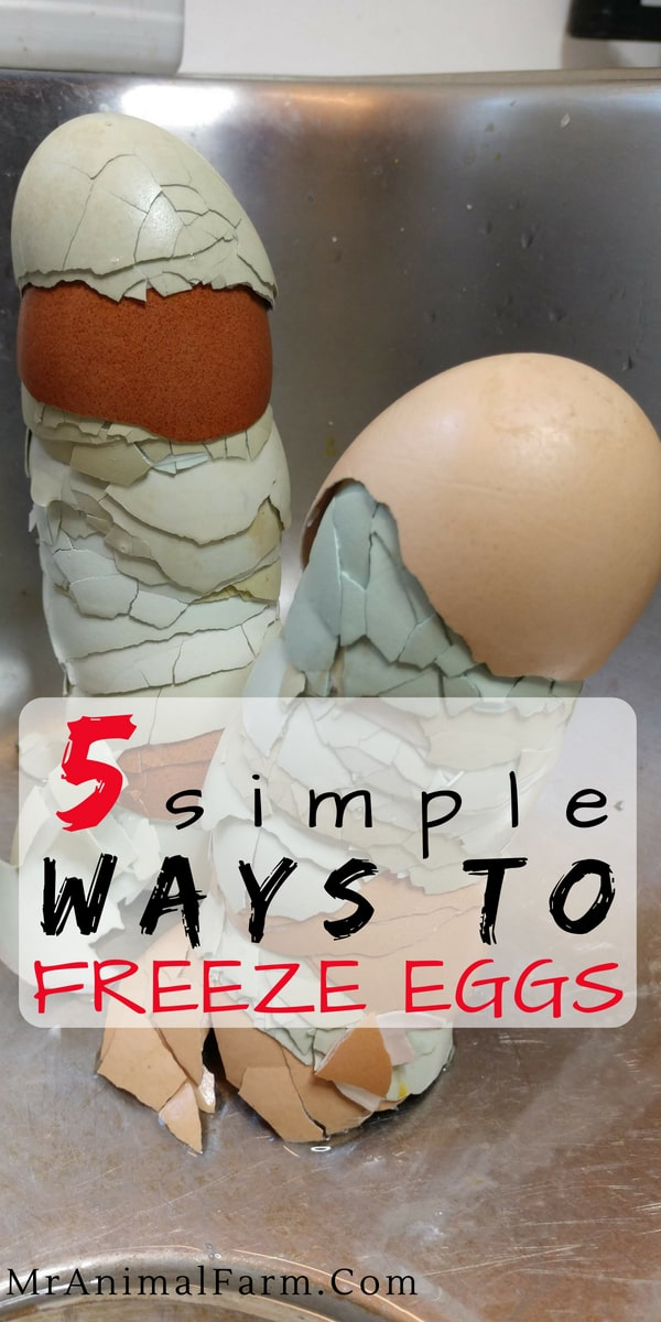 """pinterest image. text reads """"5 simple ways to freeze eggs"""""""