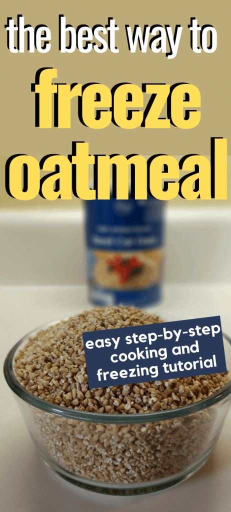 "Pinterest image depicting a bowl of uncooked steel cut oats with container blurry in the background. Text overlay stating ""the best way to freeze oatmeal. easy step-by-step cooking and freezing tutorial."""