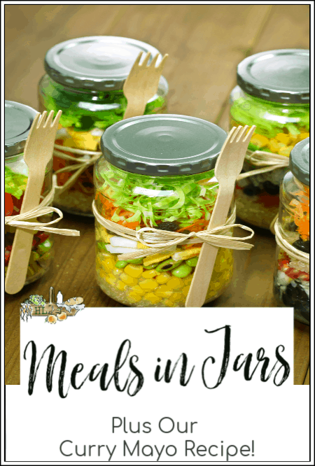 free meal plans for single meals in mason jars