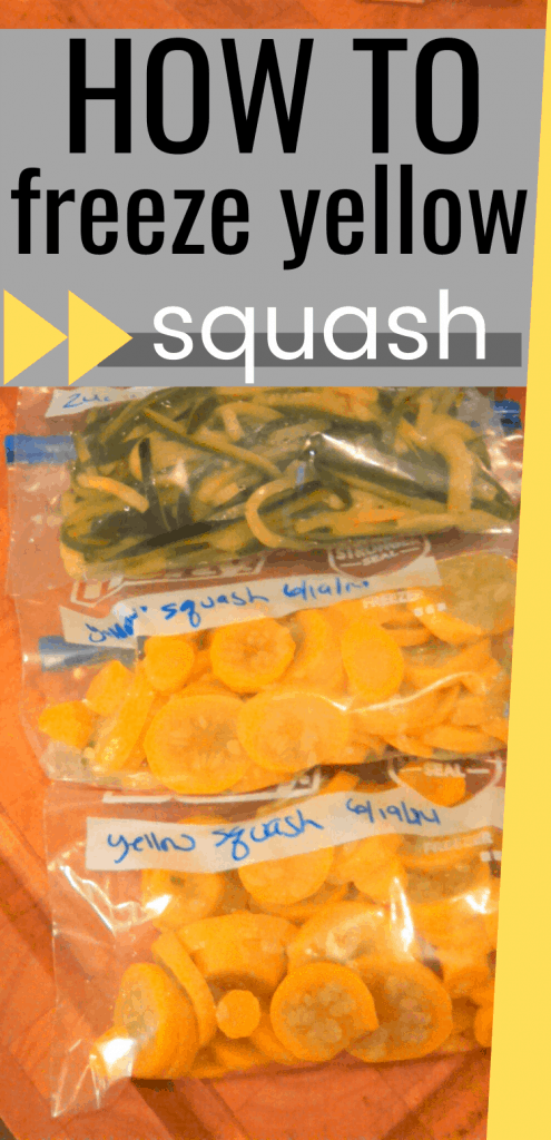 """Pinterest image with text saying """"How to freeze yellow squash"""""""