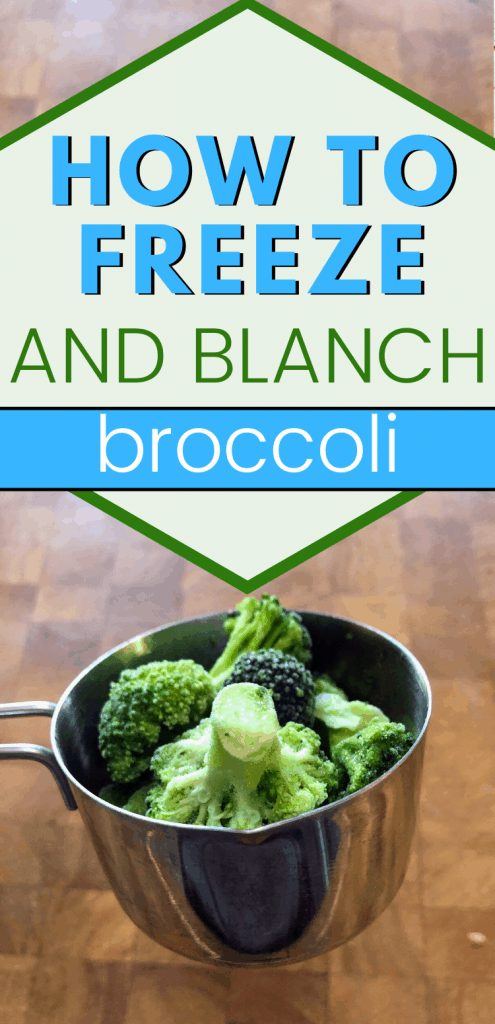 """pinterest image of broccoli in measuring cup with text reading """"How to freeze and blanch broccoli"""""""