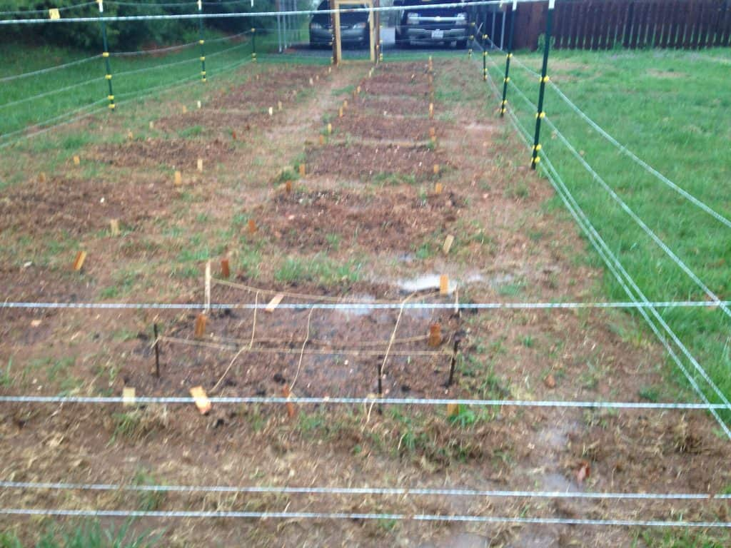 garden tilled and ready for planting