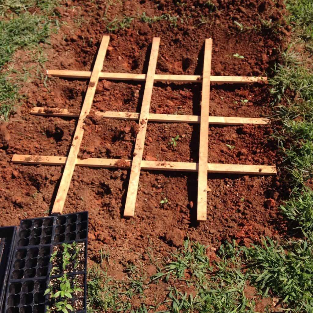 square foot gardening grid