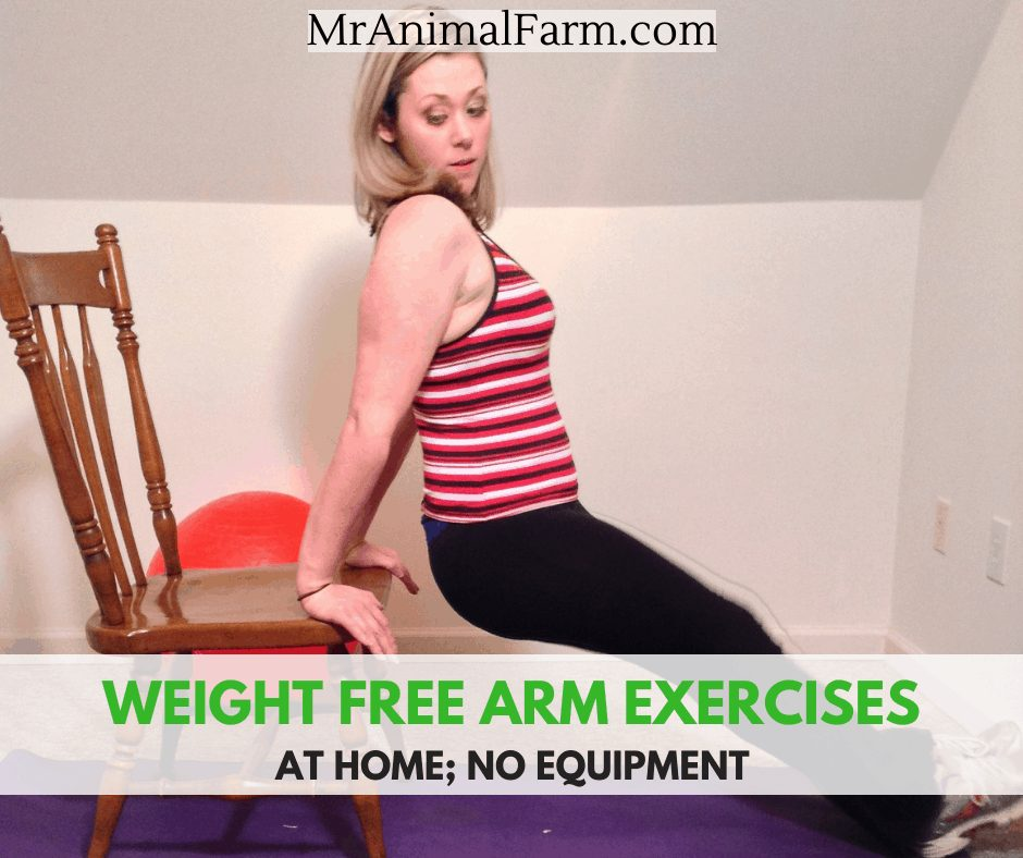 arm exercises without weights feature image of woman doing chair dips
