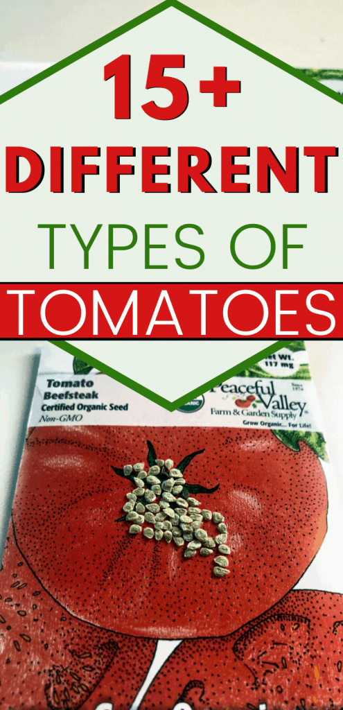 "pinterest image for types of tomatoes. text reads, ""15+ different types of tomatoes"""