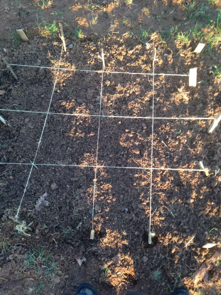 grid made with stakes and twine