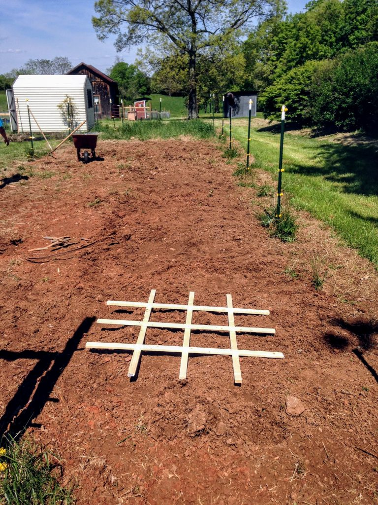 square foot gardening grid in garden