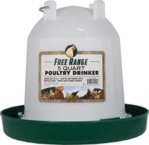 plastic chicken waterer