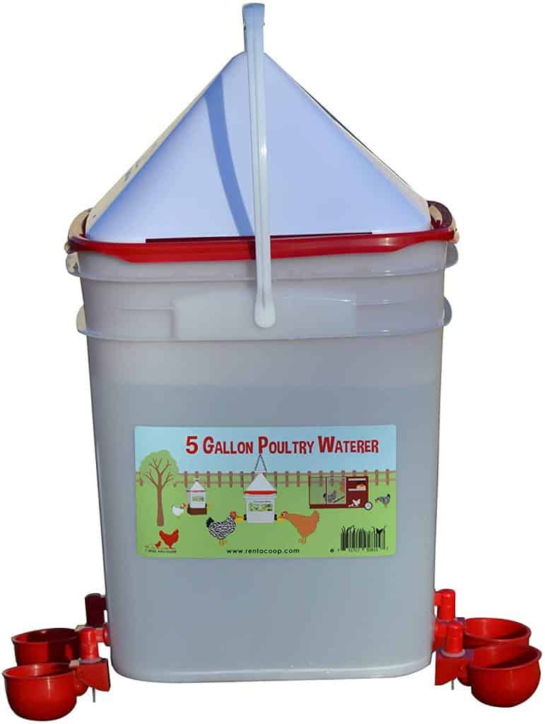 4 nipple automatic chicken waterer