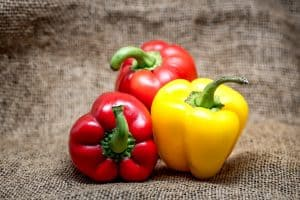 multi colored bell peppers