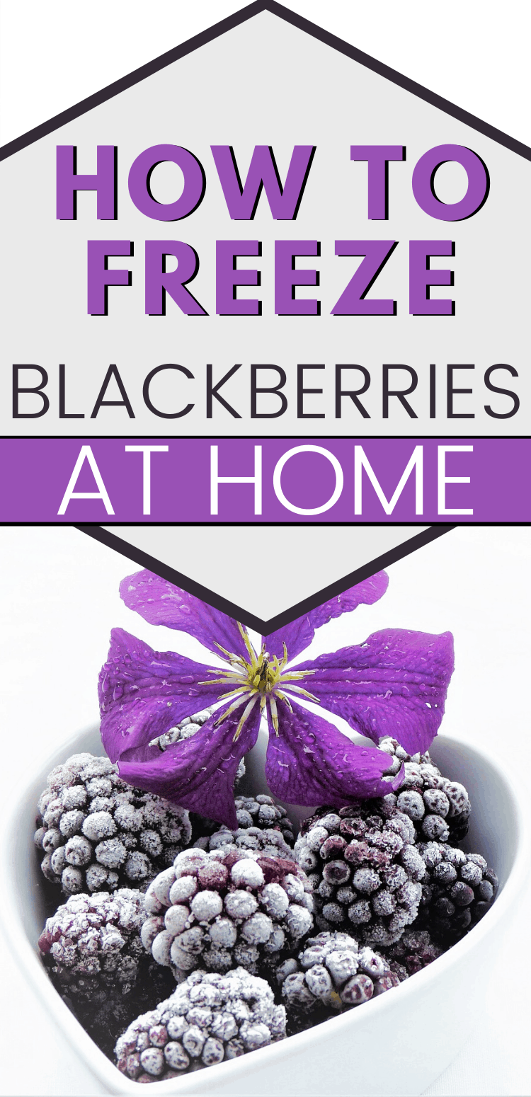 """pinterest image of heart shaped bowl filled with frozen blackberries. text reads, """"how to freeze blackberries at home"""""""