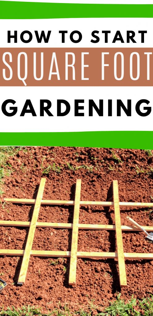 "pinterest image with square foot gardening grid. text reads, ""how to start squarefoot gardening"""
