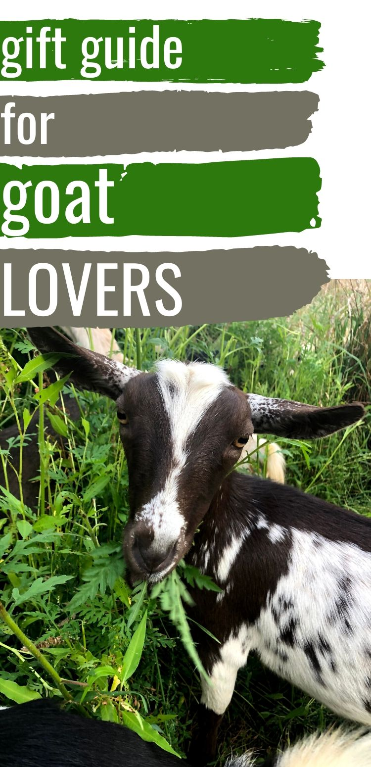 """pinterest image. text reads, """"gift guide for goat lovers"""""""