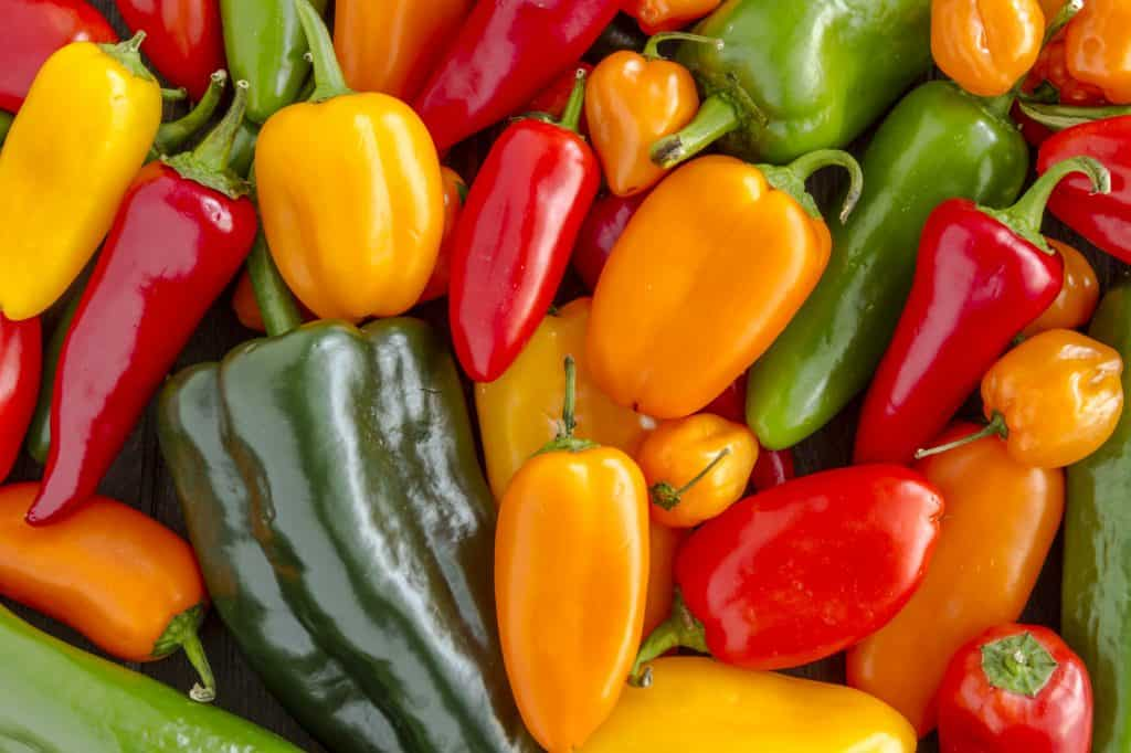 Assorted colorful varieties of hot and sweet peppers