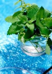 can you freeze mint leaves